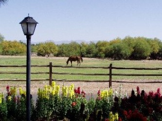My Fathers Retirement Ranch